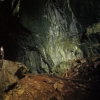 DEER CAVES GULUNG MULU