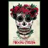 RYSZARD_KAJA_KURIOZA_FILMOWE_MEXICO_FIESTA